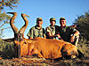 8-red-hartebeest-ph-strauss-jordaan-sharon-gene-skappak.jpg