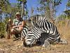 Day_11_01_Zebra.JPG