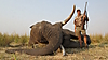 Elephant14.jpg