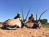 Gemsbok_Double_Header.JPG