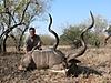 Kudu_63_.jpg