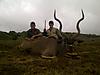 Kudu_Bull_.JPG