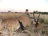 Namibia_Hunting_147_.jpg