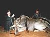 Namibia_hunting_52_.JPG