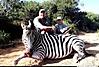 Zebra23.jpg