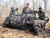 buffalo-hunt2.jpg