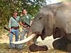 hunting-africa-12.jpg