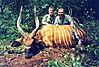 hunting-bongo4.jpg