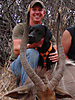 hunting-dog-09.jpg