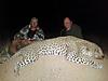 hunting-leopard-0011.jpg