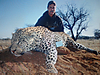 hunting-leopard-010.jpg