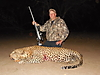 hunting-leopard-029.JPG