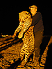 hunting-leopard-047.jpg
