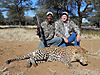 hunting-leopard-2.jpg
