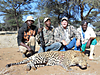 hunting-leopard-3.jpg