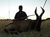 hunting-namibia-005.jpg