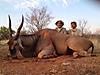 hunting-namibia-062.jpg
