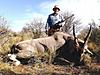 hunting-namibia-073.jpg