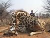 hunting-namibia-090.jpg