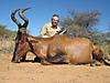 hunting-namibia-104.jpg