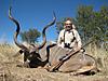 hunting-namibia-106.jpg