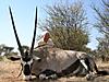 hunting-namibia-118.jpg