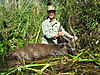 hunting-sitatunga.JPG
