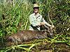 hunting-sitatunga.JPG