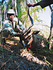 hunting-sitatunga1.jpg