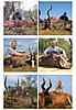 hunting-south-africa4.jpg