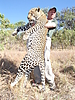 hunting-tanzania-021.JPG