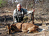 impala_black_faced_02.jpg