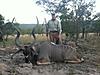 kudu213.JPG