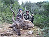 kudu_-_Score_redo.jpg