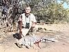 leopard-hunt5.JPG