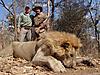 lion-008a.jpg