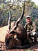 lord-derby-eland-6.jpg