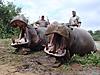zimbabwe2012_360.JPG