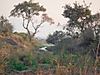 hunting-africa-141.jpg