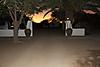 namibia_2_-_463.jpg