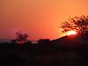 sundowner_at_Kowas_by_Paul.JPG