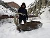 Kyrgyzstan_Ibex_2015.jpg
