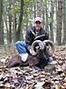 Mouflon_600_x_450_.jpg