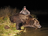 bear-hunt-alaska.jpg
