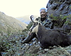 chamois_recovered_8x10.jpg