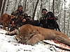 cougar-hunt-canada-01.jpg