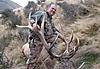 hunting-new-zealand1.jpg
