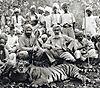 hunting-tiger-23.jpg