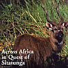 across-africa-in-quest-of-sitatunga.jpg