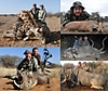 1-Collage_Vos_Safaris_August_2014.jpg
